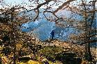 На одной из скальных полочек на склоне Яманкая (Горное Ущелье)