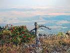 Таков типичный вид с хребта Крыкты-Тау на восток.(фото Н. Арзамасцева)