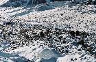 на леднике Южный Иныльчек