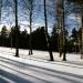 Предпоследний зимний пейзаж