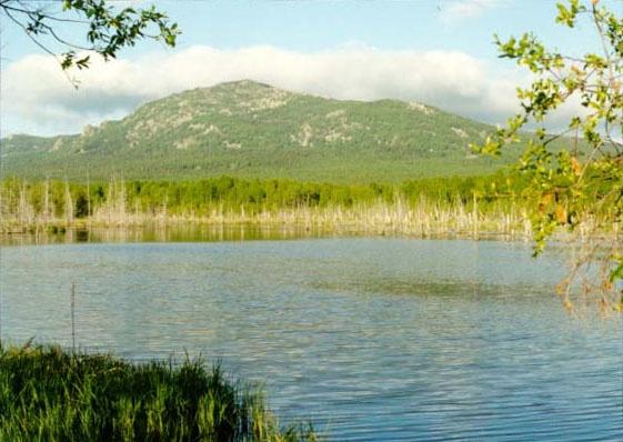 Озеро на Журболоте