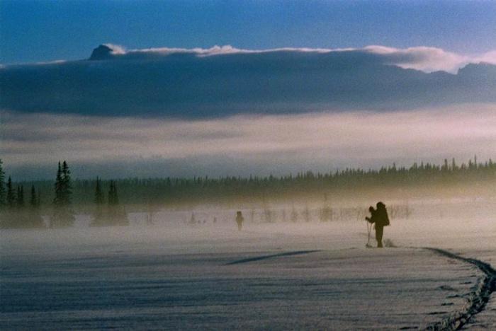 утро на болотах