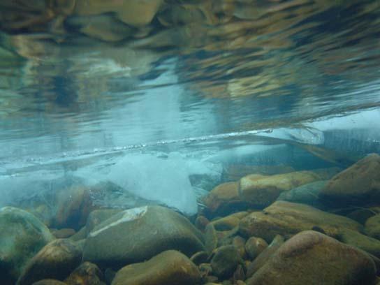 Медленно плыть к чистой воде...