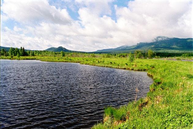 на озере в урочище Журболото
