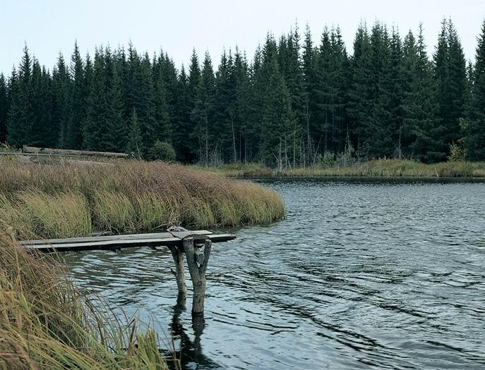 Журавлиные озера