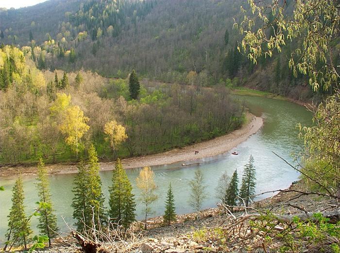 Изгиб реки зеленой