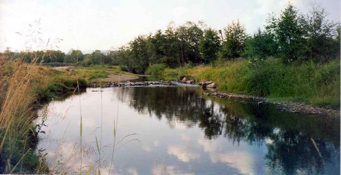 Речка Куштумга