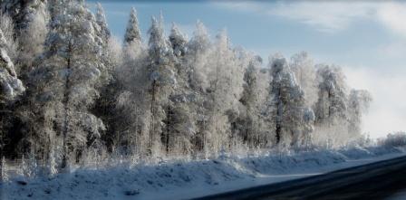 по дороге в Абзаково