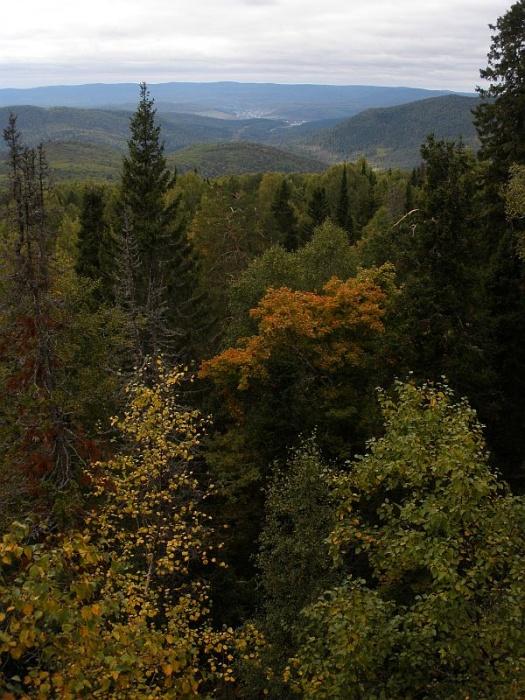 Золотая осень на Инзере
