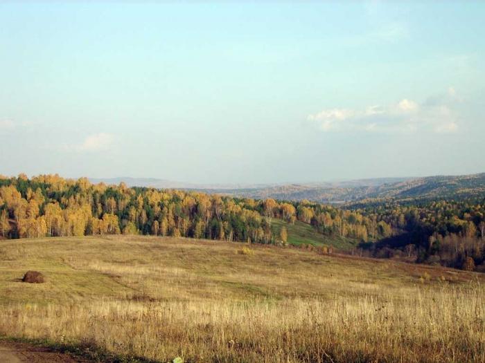 Смешаные леса
