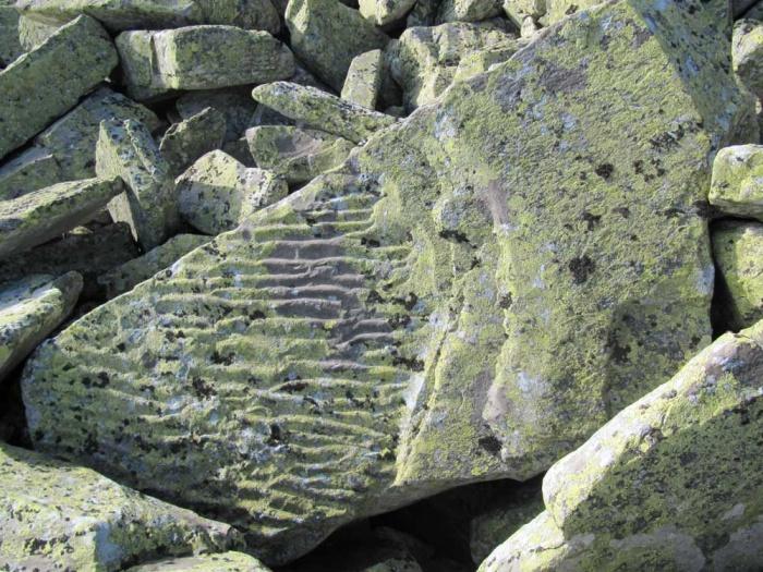 Stoneprint