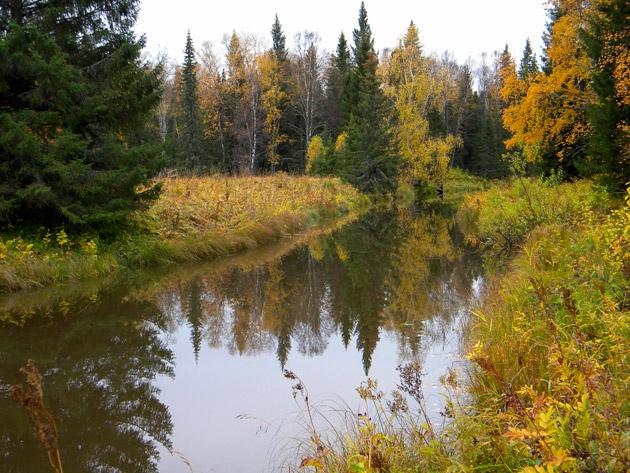 Тихая осень на Тихой реке
