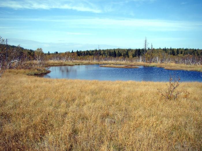 Озеро Восточное верхнее.