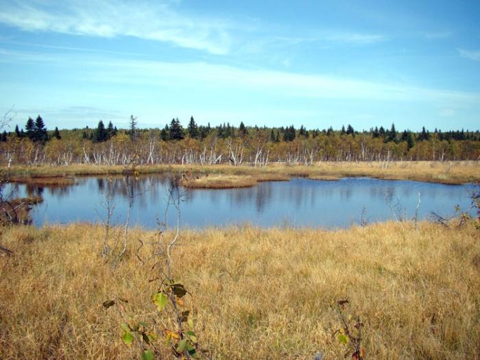 Озеро Восточное среднее.
