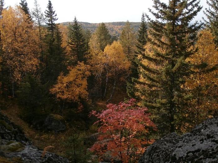 Гора Кусимова, у вершины 1080 м