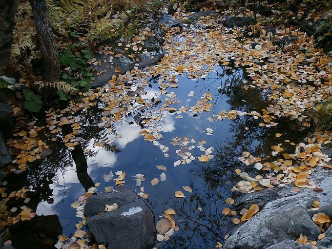 Речка Могак. Немного Солнца в холодной воде....
