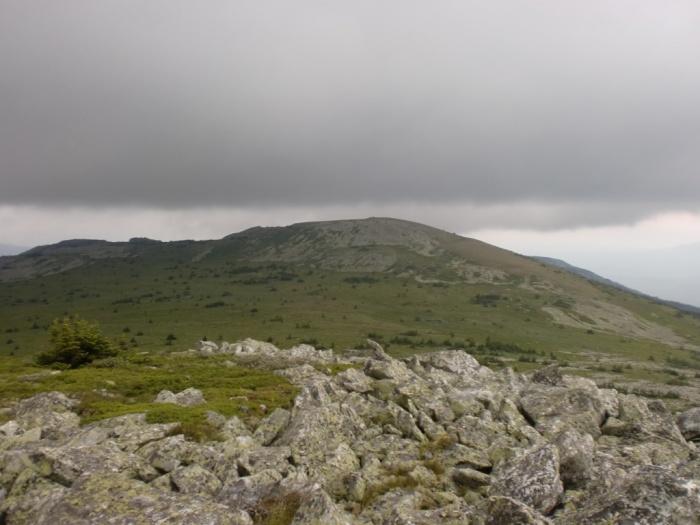 Гора Круглая Сопка