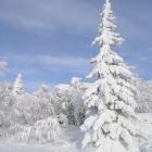 Снег и небо