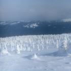 Кузъелгинские пастбища зимой