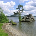 Озеро, Остров, Сосна.