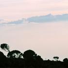 Просторы Килиманджаро.