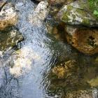 Прозрачны и холодны воды Карагайки