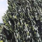 9 мая 2006г. на вершине хребта