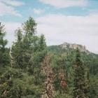 Скалы на хребтике между Инзерскими Зубчатками и Кумардаком
