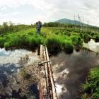 Мостик на дамбе между озёрами Журболота