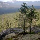 перевал Медвежий