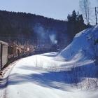 Зеленый поезд виляя задом