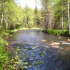 у истоков реки