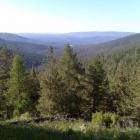 Вид в долину речки Саранга.