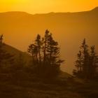 Вечер на плато