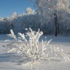 Перевал Урал-Тау