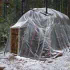 Первый снегопад осенью 2010