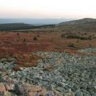 На плато Зигальги