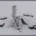 На Севере диком, на Южном Урале.... )