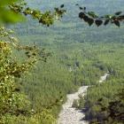 Курум с горы Медвежья (хр. Машак)