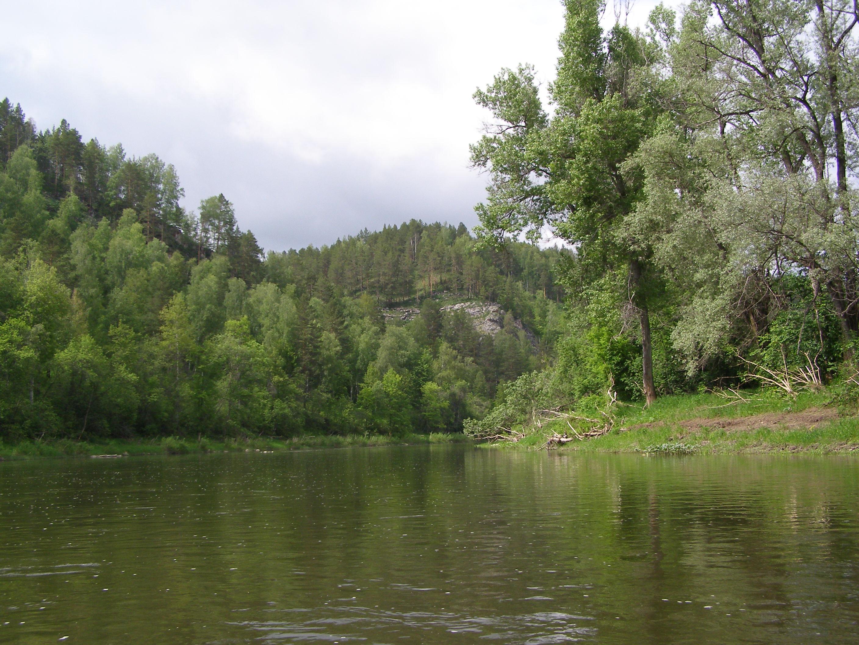 Моей жене захотелось этого реке