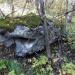 Olga:Авотипервыйкамешек