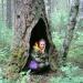 Леснойтеремок