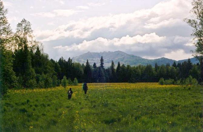Медвежья с длинной поляны