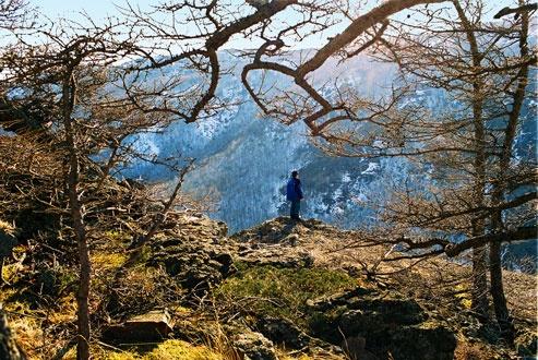 На одной из скальных полочек на склоне Яманкая
