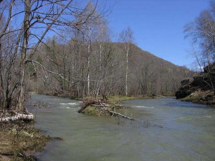Слияние рек Большой и Малый Ряузяк