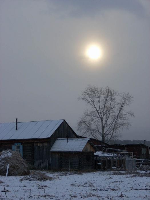 Пасмурным январским утром