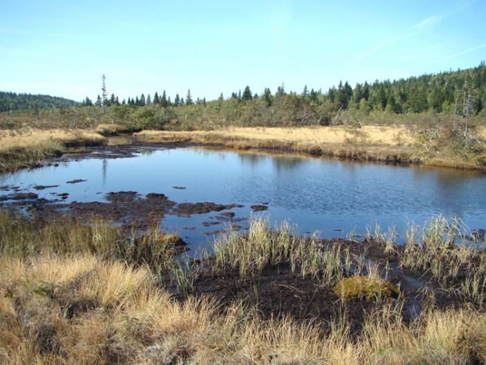 Озеро Длинное.