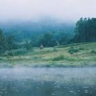 Утренний туман или время самого сладкого сна ;)
