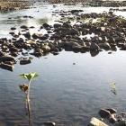 Река Тирлян.