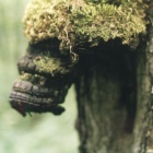 Лесной черт.